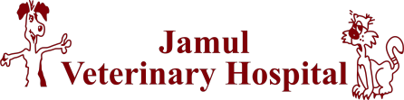 Jamul Veterinary Hospital